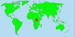 Congo-Pygmean
